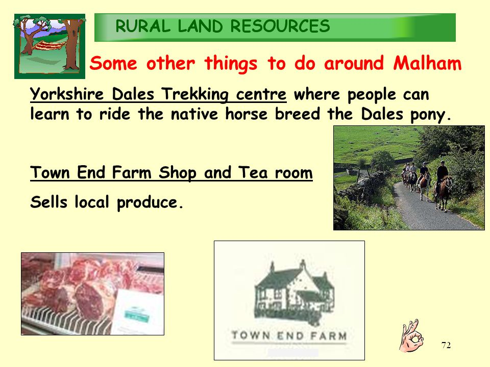 RURALLAND RESOURCES RURAL LAND RESOURCES Some other things to do around Malham Yorkshire Dales Trekking centre where people can learn to ride the native horse breed the Dales pony.