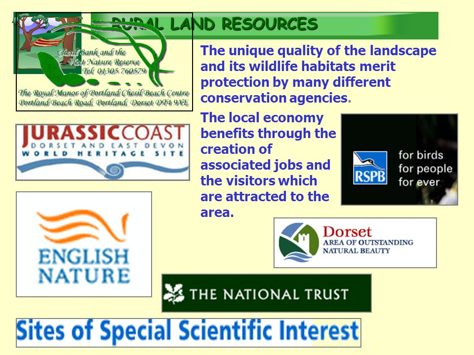 RURALLAND RESOURCES RURAL LAND RESOURCES The unique quality of the landscape and its wildlife habitats merit protection by many different conservation agencies.