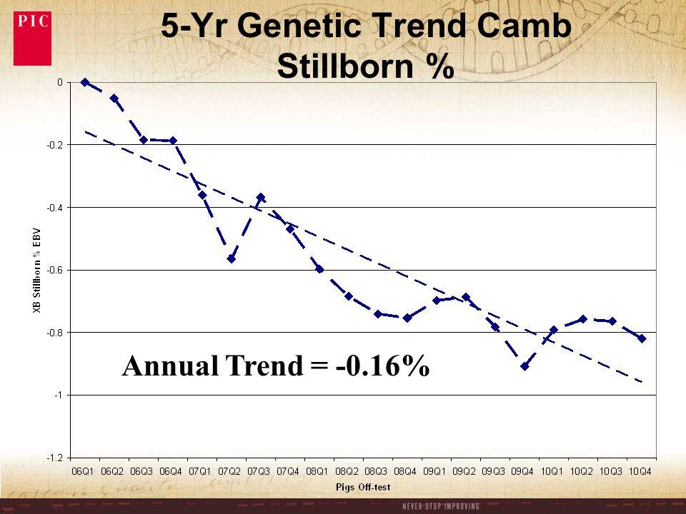 5-Yr Genetic Trend Camb Stillborn % Annual Trend = -0.16%