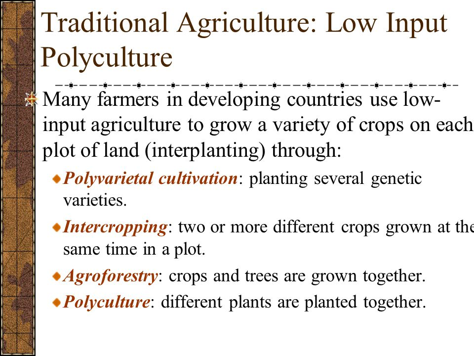 Traditional Agriculture: Low Input Polyculture Many farmers in developing countries use low- input agriculture to grow a variety of crops on each plot of land (interplanting) through: Polyvarietal cultivation: planting several genetic varieties.