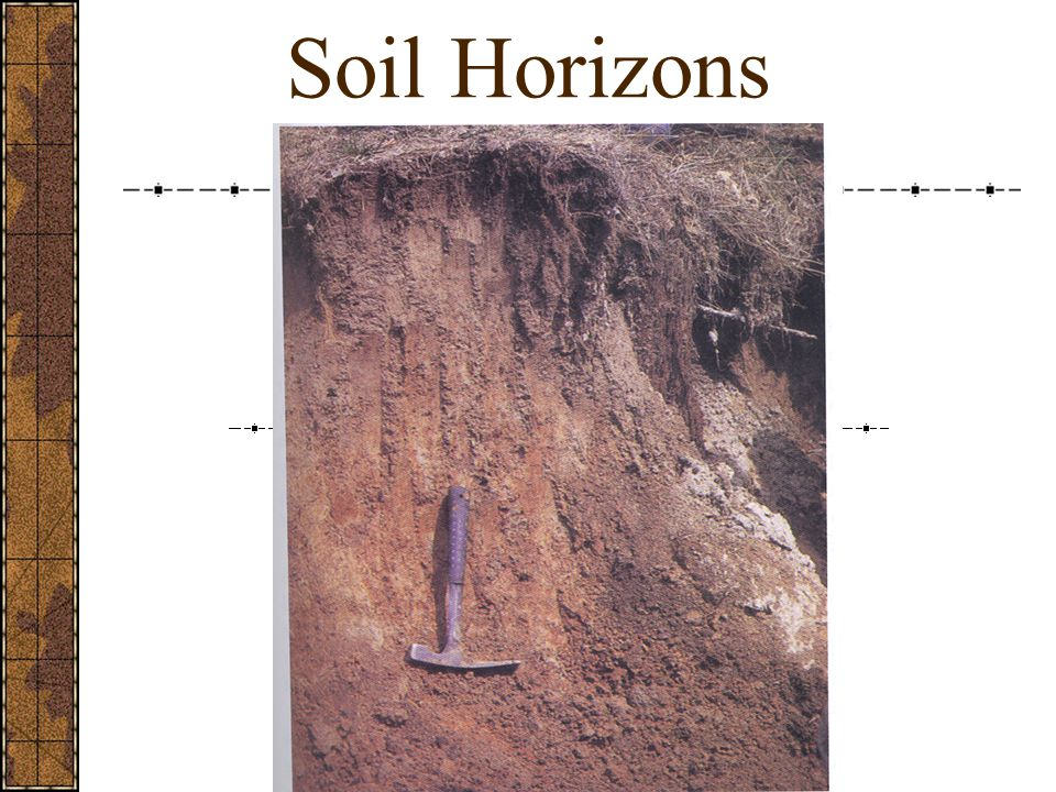 Global Outlook: Soil Erosion Soil is eroding faster than it is forming on more than one-third of the world's cropland.