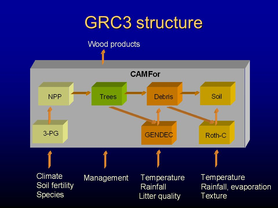 GRC3 structure