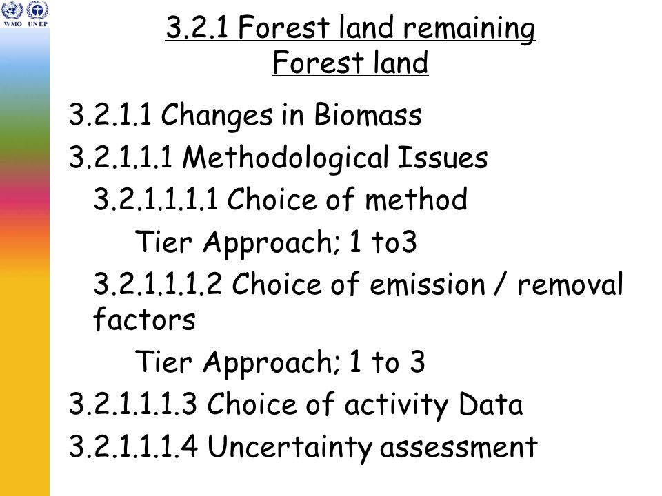 3.2.1 Forest land remaining Forest land 3.2.1.1 Changes in Biomass 3.2.1.1.1 Methodological Issues 3.2.1.1.1.1 Choice of method Tier Approach; 1 to3 3.2.1.1.1.2 Choice of emission / removal factors Tier Approach; 1 to 3 3.2.1.1.1.3 Choice of activity Data 3.2.1.1.1.4 Uncertainty assessment