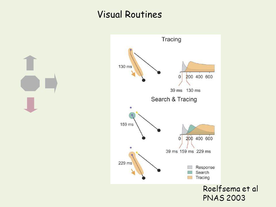 Roelfsema et al PNAS 2003 Visual Routines