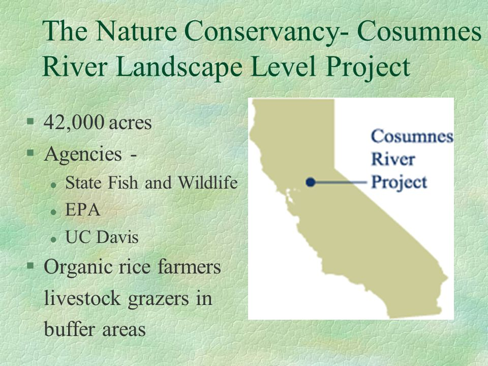 The Nature Conservancy- Cosumnes River Landscape Level Project §42,000 acres §Agencies - l State Fish and Wildlife l EPA l UC Davis §Organic rice farm