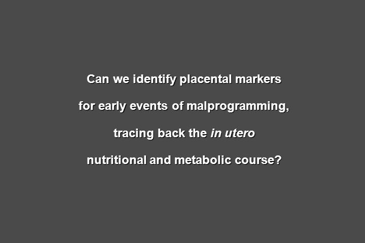 Can we identify placental markers for early events of malprogramming, tracing back the in utero nutritional and metabolic course?