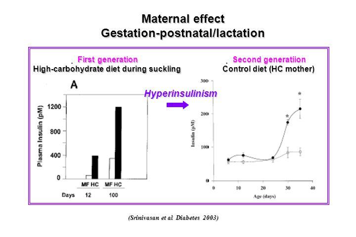 (Srinivasan et al Diabetes 2003) Maternal effect Gestation-postnatal/lactation First generation  First generation High-carbohydrate diet during suckl