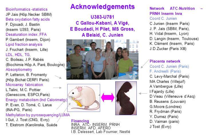 Acknowledgements Bioinformatics -statistics JP Jais (Hôp.Necker SBIM) Beta oxydation fatty acids F. Djouadi, J. Bastin (Inserm U393, Paris) Desaturati