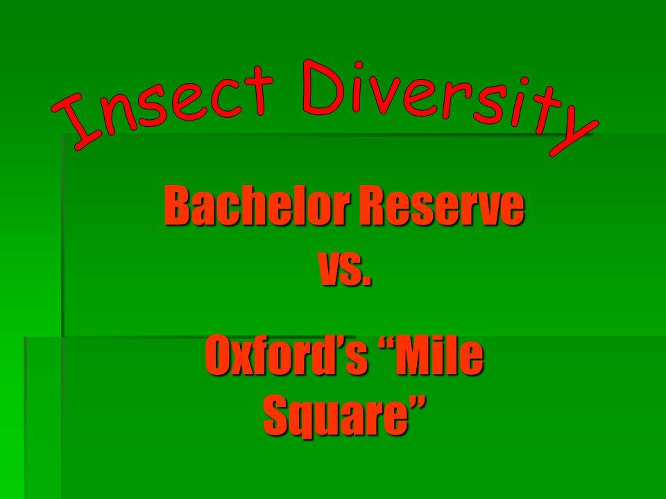 "Bachelor Reserve vs. Oxford's ""Mile Square"""