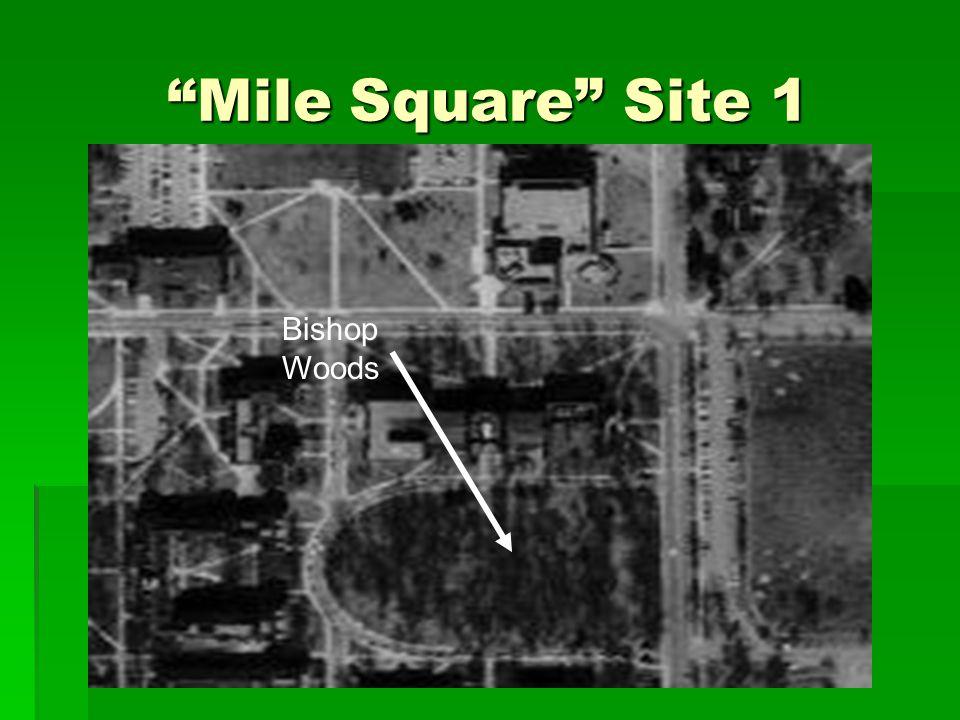 """Mile Square"" Site 1 Bishop Woods"