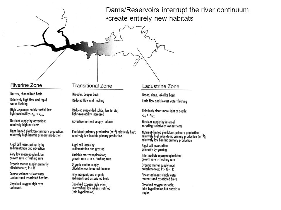 Dams/Reservoirs interrupt the river continuum create entirely new habitats