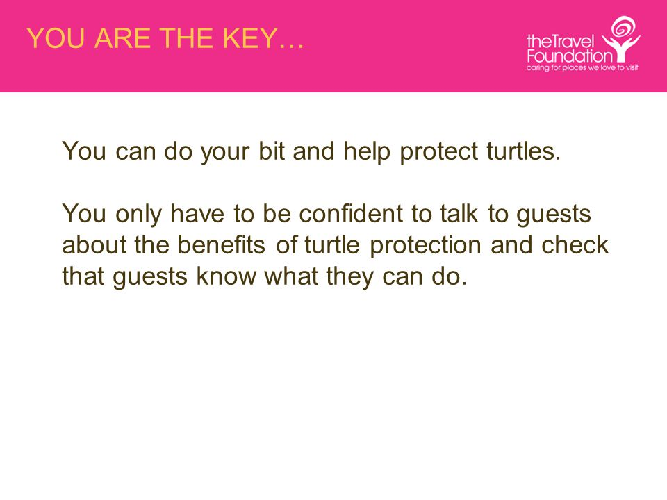 You can do your bit and help protect turtles.