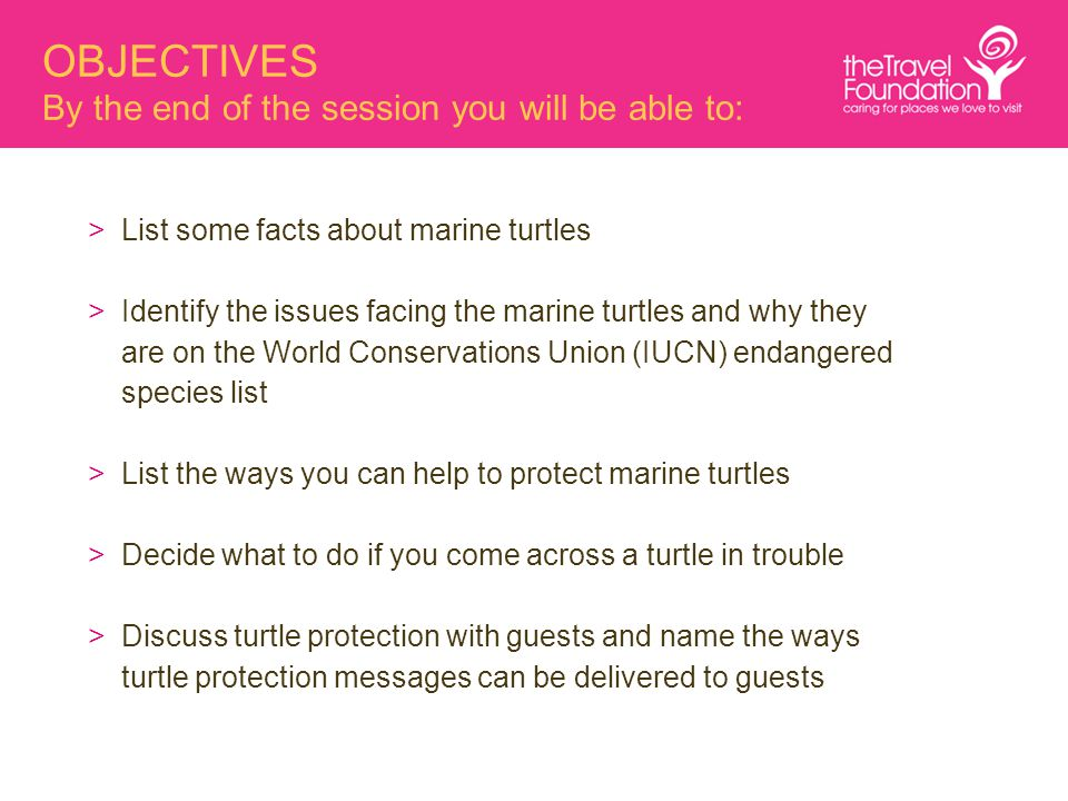 OBJECTIVES By the end of the session you will be able to: >List some facts about marine turtles >Identify the issues facing the marine turtles and why