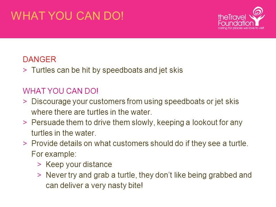 WHAT YOU CAN DO! DANGER >Turtles can be hit by speedboats and jet skis WHAT YOU CAN DO! >Discourage your customers from using speedboats or jet skis w