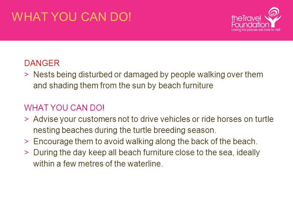 WHAT YOU CAN DO! DANGER >Nests being disturbed or damaged by people walking over them and shading them from the sun by beach furniture WHAT YOU CAN DO