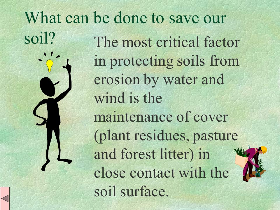 The soils of our planet have formed over thousands of years in conditions which have long since changed.