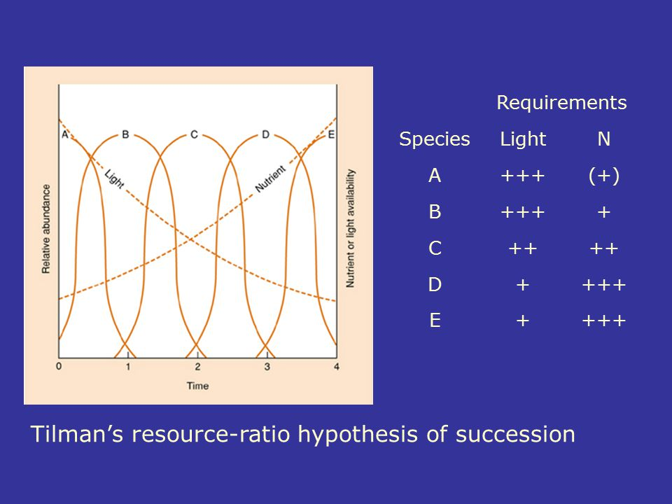 Requirements SpeciesLightN A+++(+) B++++ C++ D++++ E+ Tilman's resource-ratio hypothesis of succession