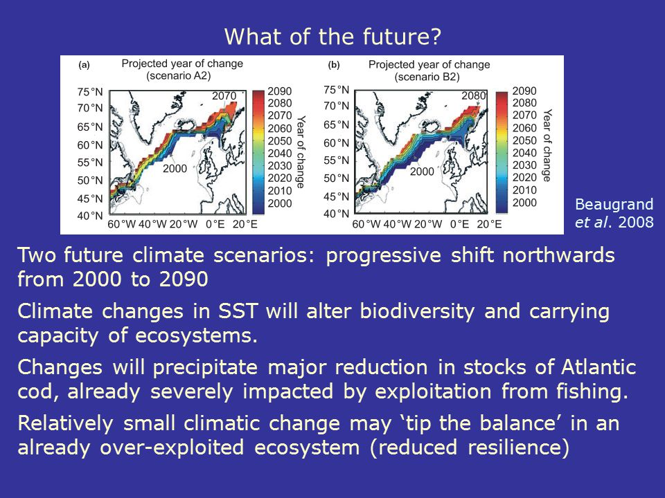 What of the future? Two future climate scenarios: progressive shift northwards from 2000 to 2090 Climate changes in SST will alter biodiversity and ca
