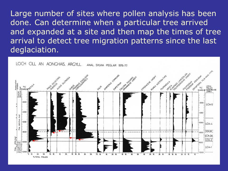Large number of sites where pollen analysis has been done. Can determine when a particular tree arrived and expanded at a site and then map the times