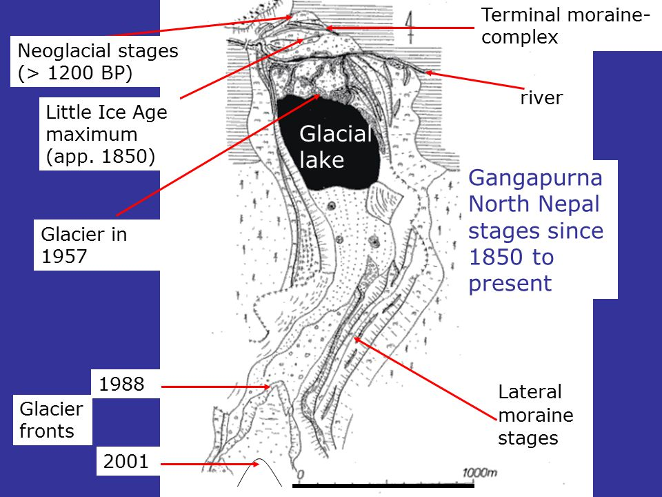 river Glacial lake Lateral moraine stages Terminal moraine- complex Little Ice Age maximum (app. 1850) Neoglacial stages (> 1200 BP) 1988 2001 Glacier