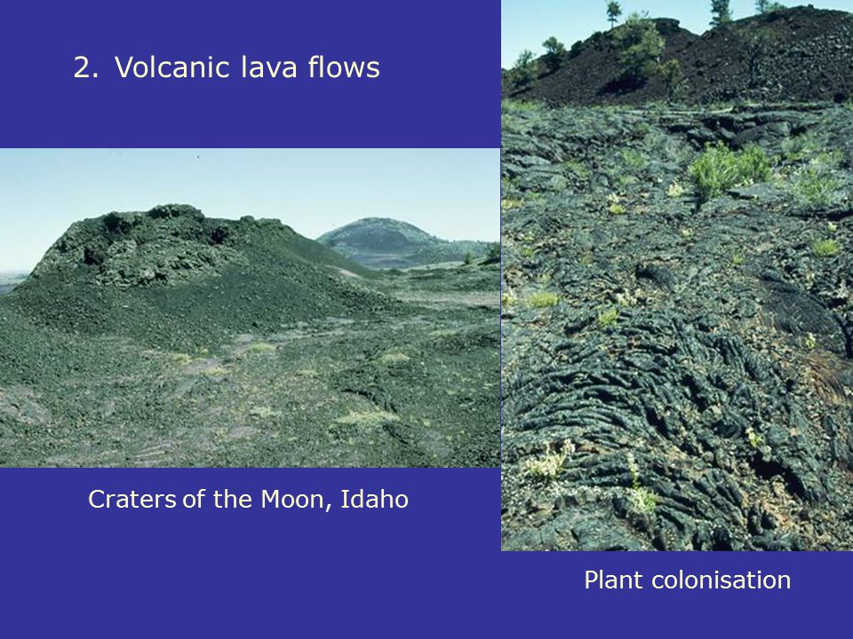 2.Volcanic lava flows Craters of the Moon, Idaho Plant colonisation