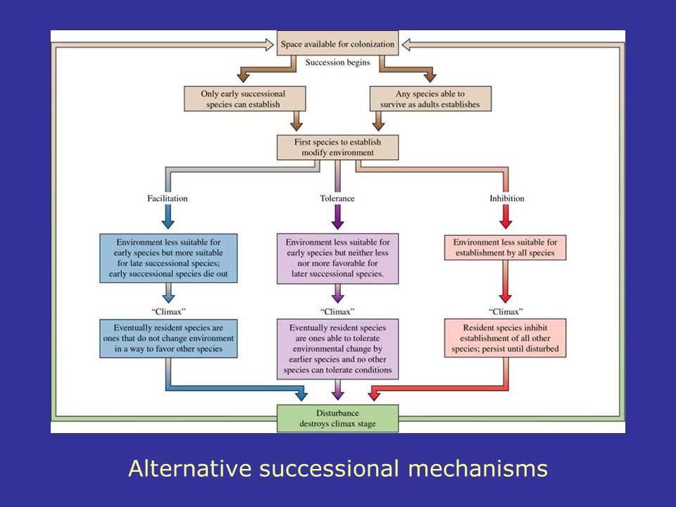 Alternative successional mechanisms
