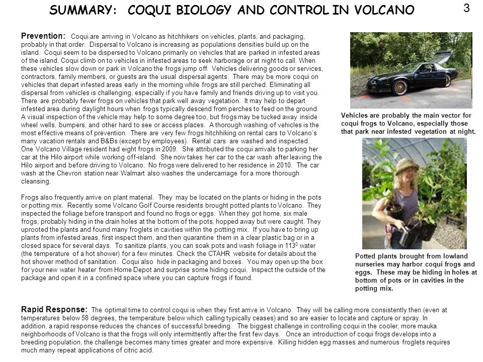 SUMMARY: COQUI BIOLOGY AND CONTROL IN VOLCANO Prevention: Coqui are arriving in Volcano as hitchhikers on vehicles, plants, and packaging, probably in that order.
