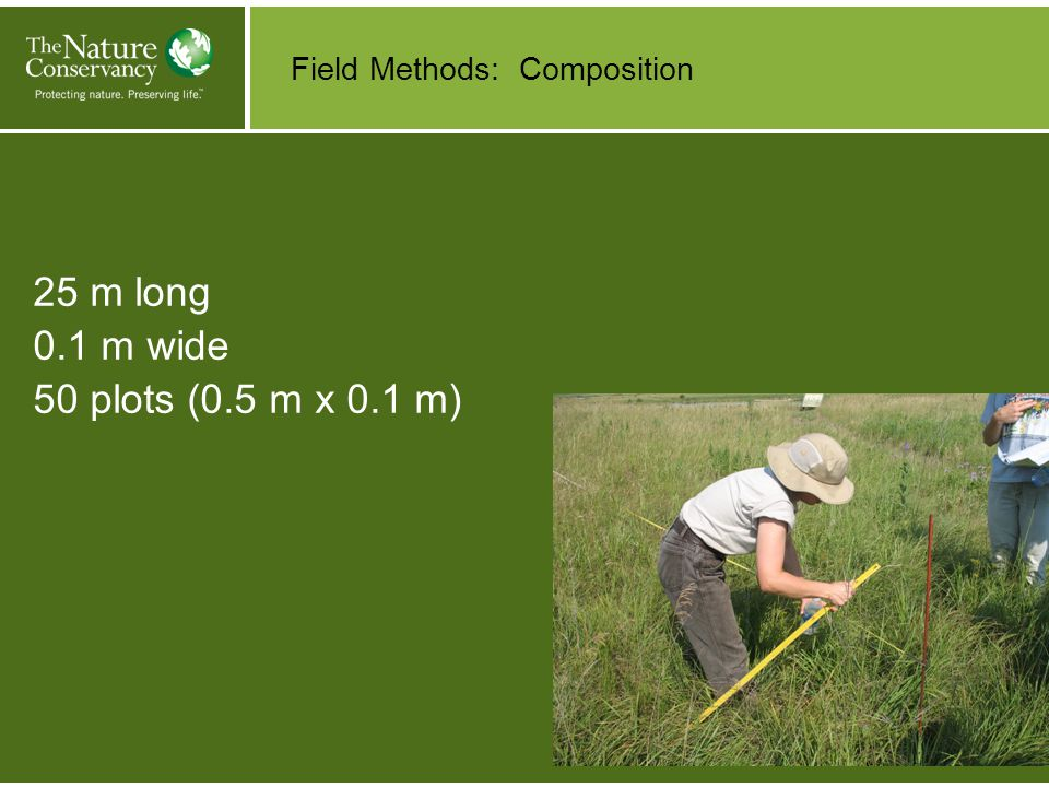 Field Methods: Structure Visual Obstruction Reading (VOR)- at beginning of transect Average height (every 5 m) Litter depth (every 5 m)