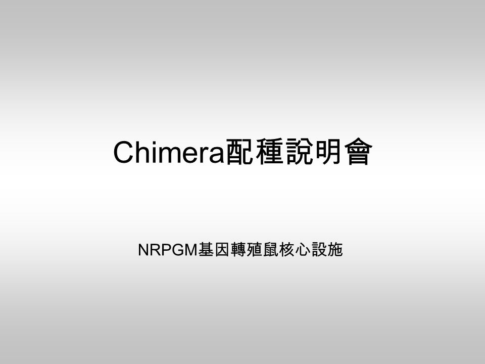 Chimera 配種說明會 NRPGM 基因轉殖鼠核心設施