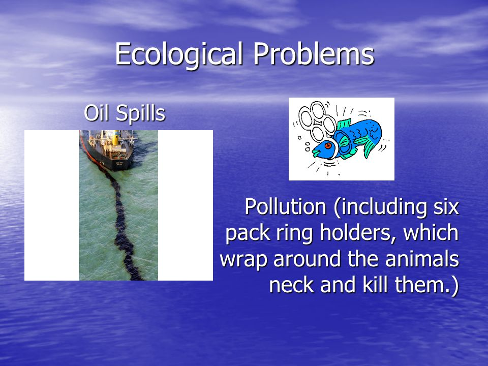 Ecological Problems Oil Spills Oil Spills Pollution (including six pack ring holders, which wrap around the animals neck and kill them.)