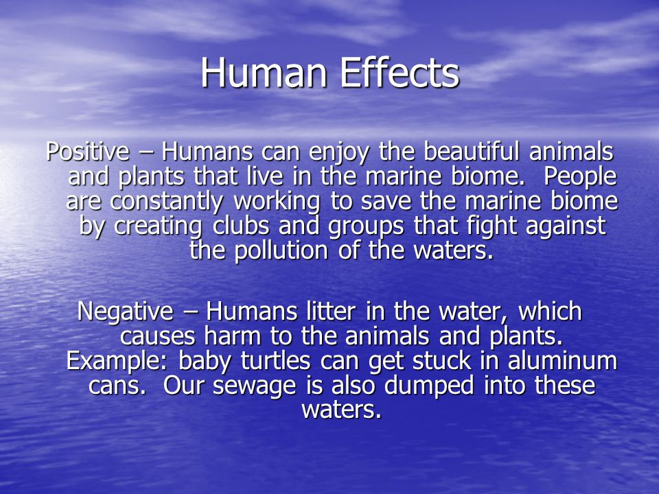 Human Effects Positive – Humans can enjoy the beautiful animals and plants that live in the marine biome.