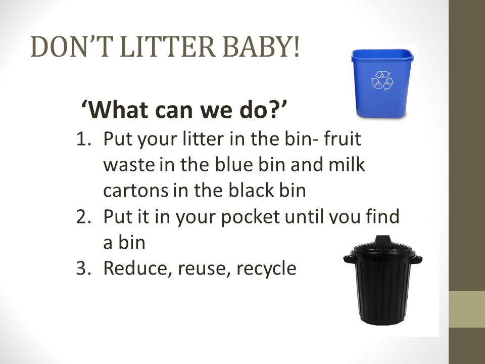 'What can we do ' 1.Put your litter in the bin- fruit waste in the blue bin and milk cartons in the black bin 2.Put it in your pocket until you find a bin 3.Reduce, reuse, recycle