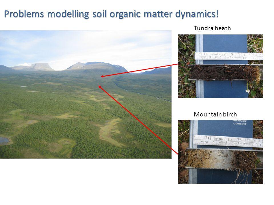 Tundra heath Mountain birch Problems modelling soil organic matter dynamics!
