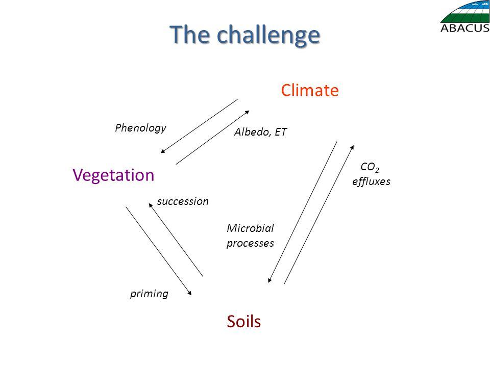 The challenge Vegetation Soils Climate priming succession Albedo, ET Phenology CO 2 effluxes Microbial processes