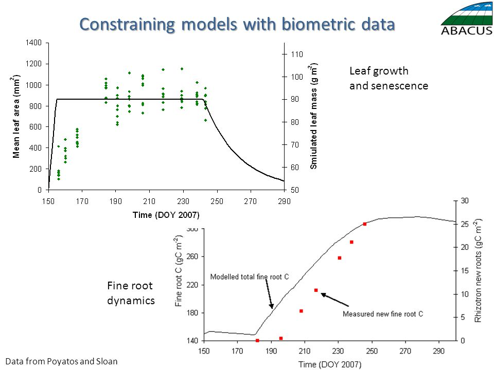 Leaf growth and senescence Fine root dynamics Data from Poyatos and Sloan Constraining models with biometric data
