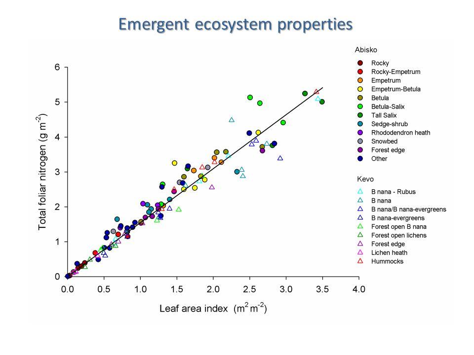 Emergent ecosystem properties