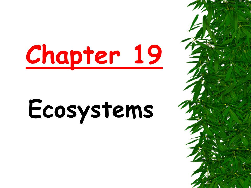 Chapter 19 Ecosystems