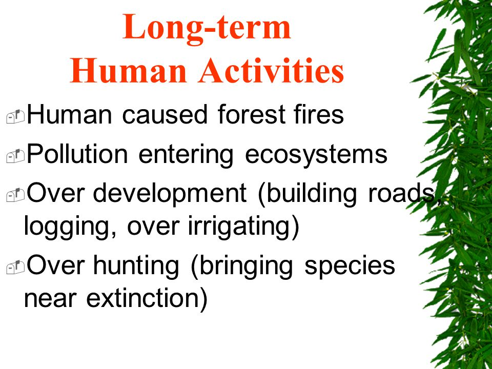 Long-term Human Activities  Human caused forest fires  Pollution entering ecosystems  Over development (building roads, logging, over irrigating)  Over hunting (bringing species near extinction)