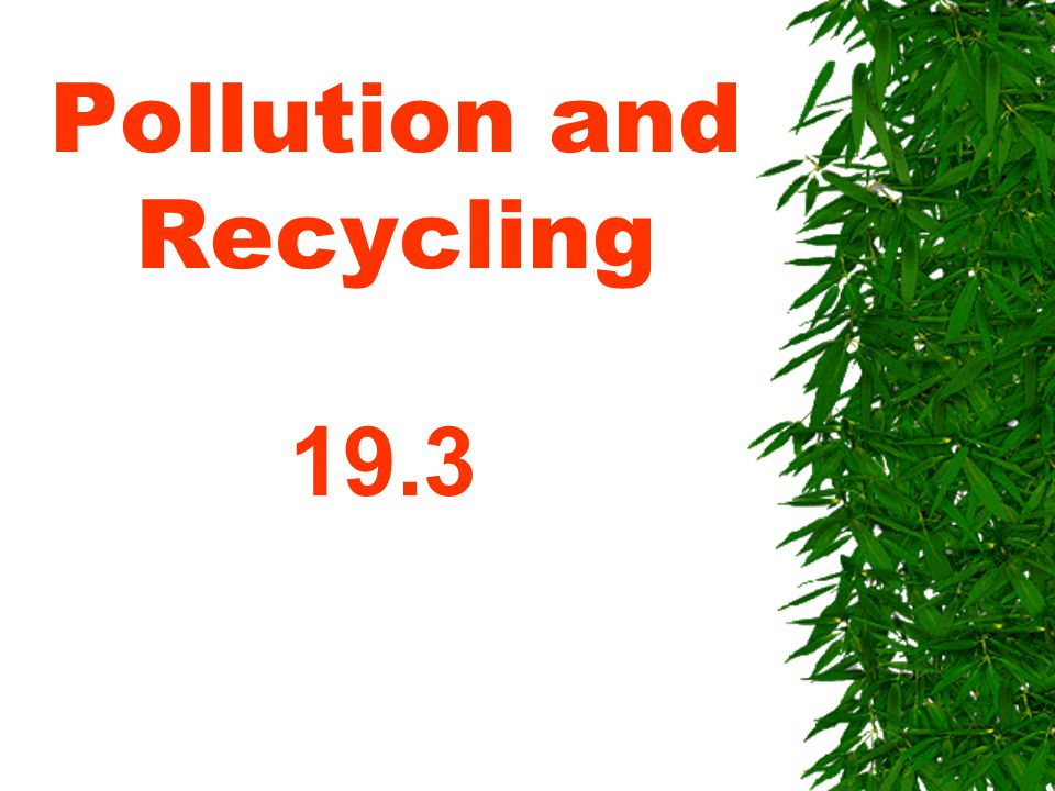 Pollution and Recycling 19.3