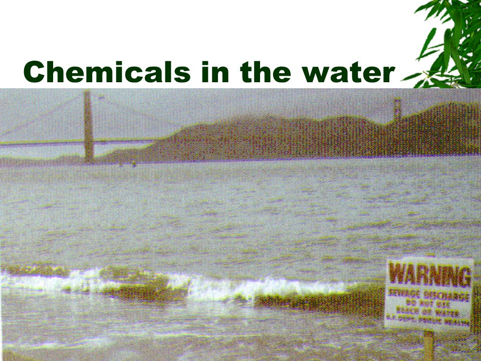Chemicals in the water