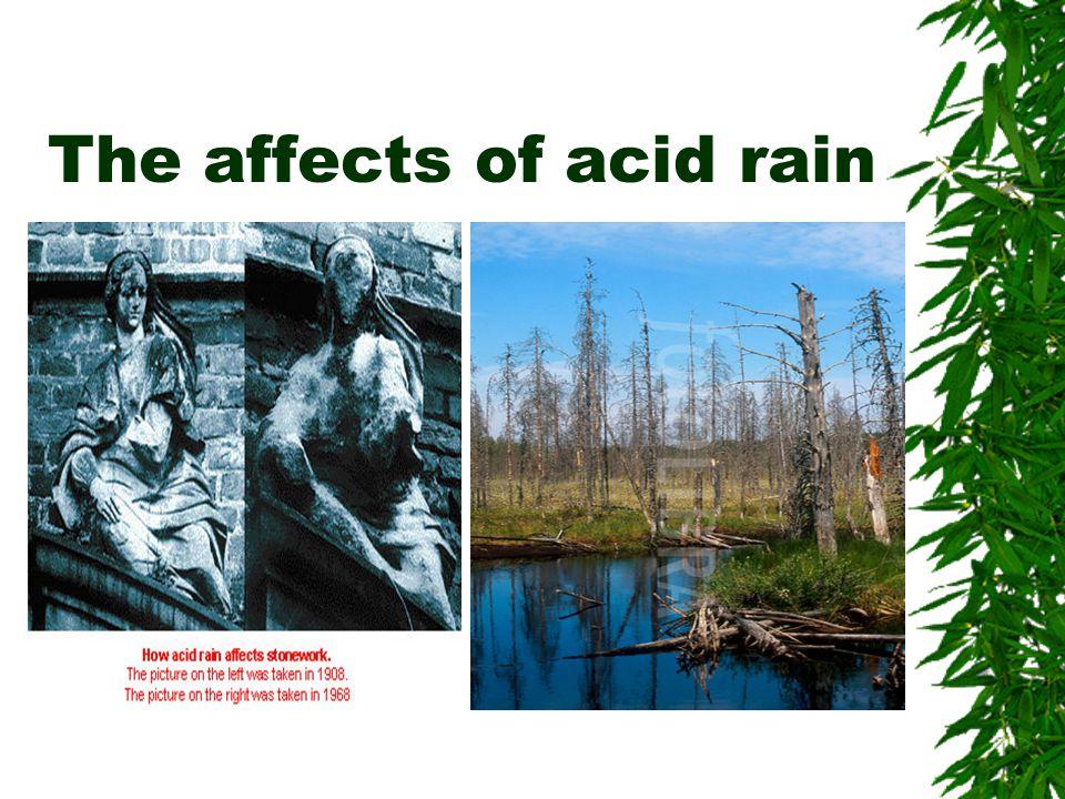 The affects of acid rain