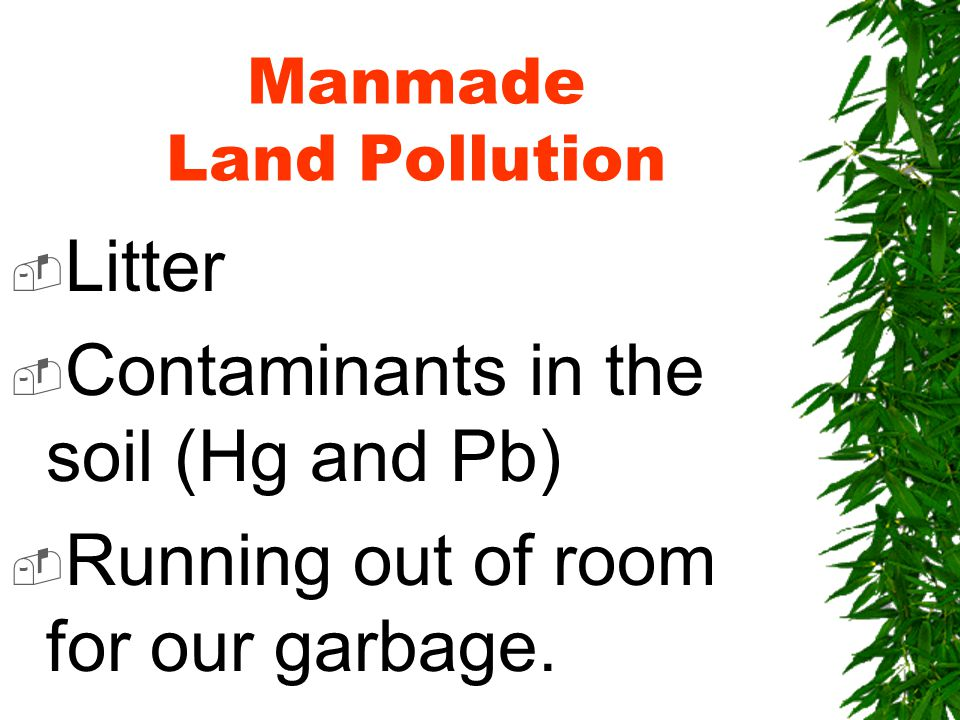 Manmade Land Pollution  Litter  Contaminants in the soil (Hg and Pb)  Running out of room for our garbage.