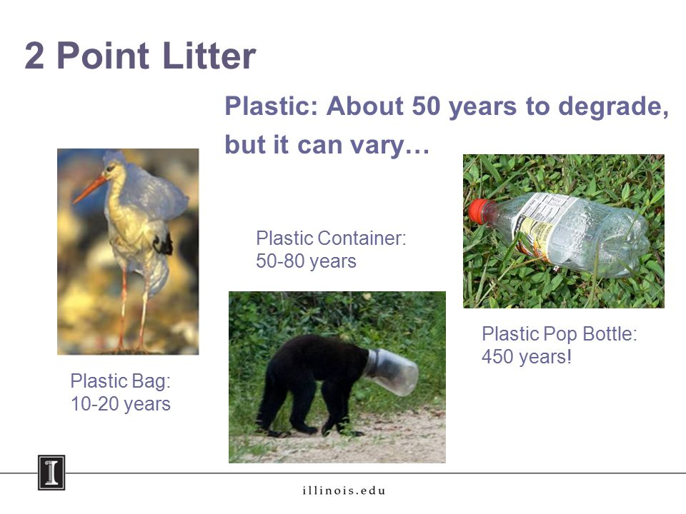 2 Point Litter Plastic Bag: 10-20 years Plastic: About 50 years to degrade, but it can vary… Plastic Container: 50-80 years Plastic Pop Bottle: 450 years!