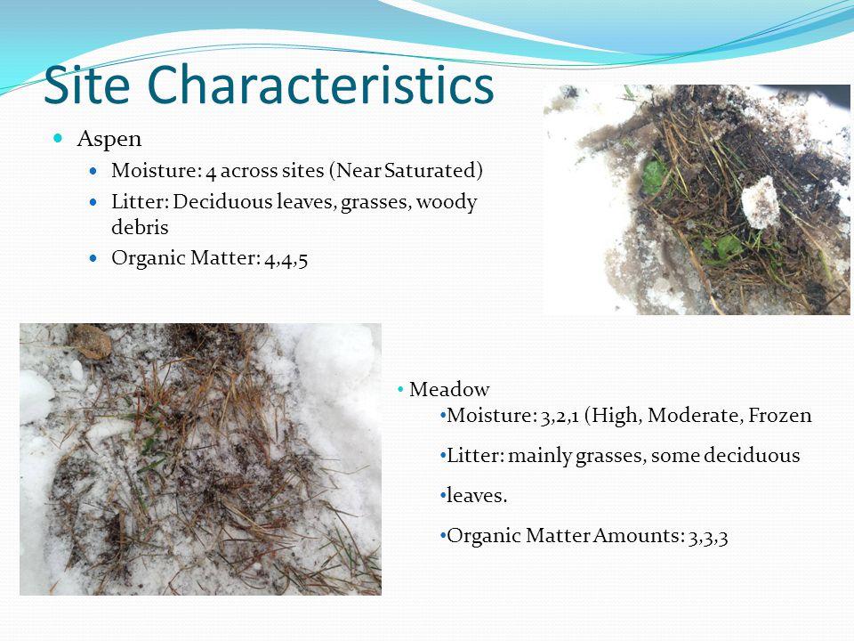 Site Characteristics Aspen Moisture: 4 across sites (Near Saturated) Litter: Deciduous leaves, grasses, woody debris Organic Matter: 4,4,5 Meadow Mois