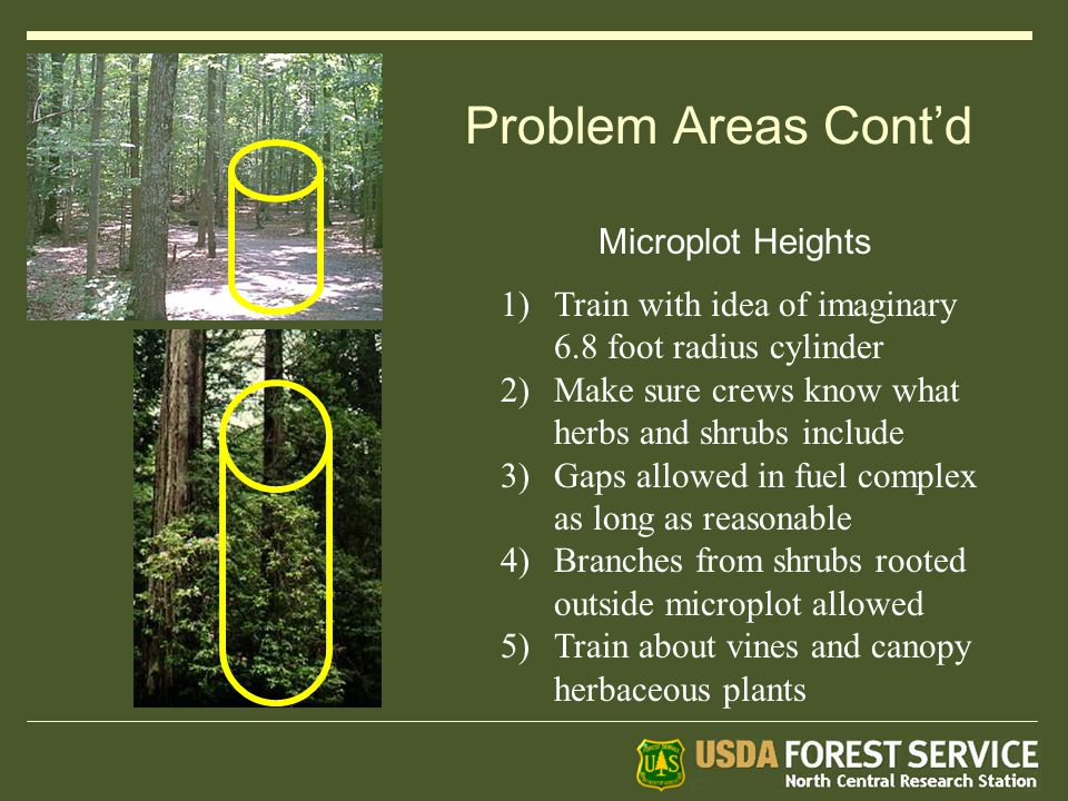 Problem Areas Cont'd 1)Train with idea of imaginary 6.8 foot radius cylinder 2)Make sure crews know what herbs and shrubs include 3)Gaps allowed in fuel complex as long as reasonable 4)Branches from shrubs rooted outside microplot allowed 5)Train about vines and canopy herbaceous plants Microplot Heights