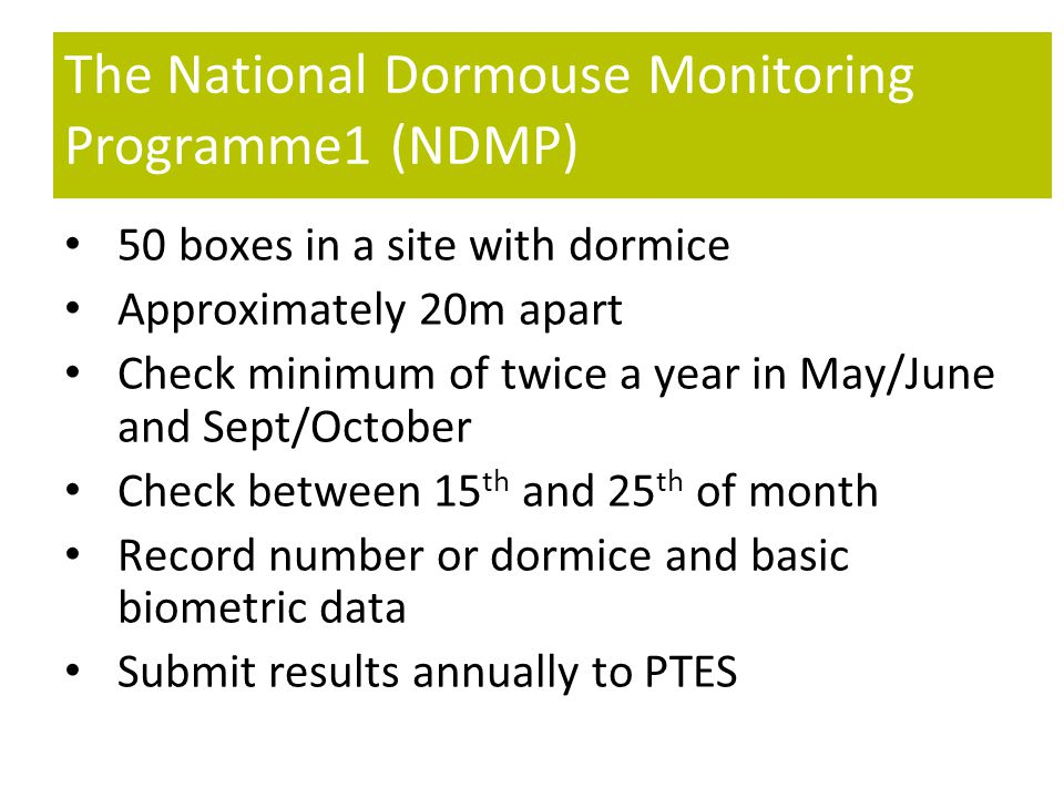 The National Dormouse Monitoring Programme1 (NDMP) 50 boxes in a site with dormice Approximately 20m apart Check minimum of twice a year in May/June and Sept/October Check between 15 th and 25 th of month Record number or dormice and basic biometric data Submit results annually to PTES