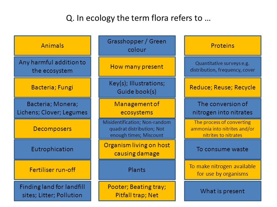 Q. In ecology the term flora refers to … Animals Bacteria; Monera; Lichens; Clover; Legumes Finding land for landfill sites; Litter; Pollution Fertili