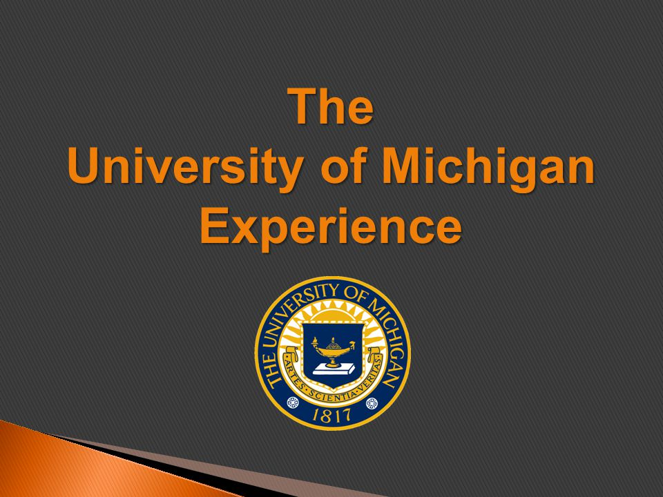 The University of Michigan Experience