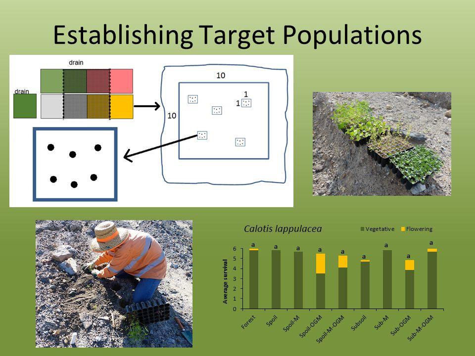 Establishing Target Populations