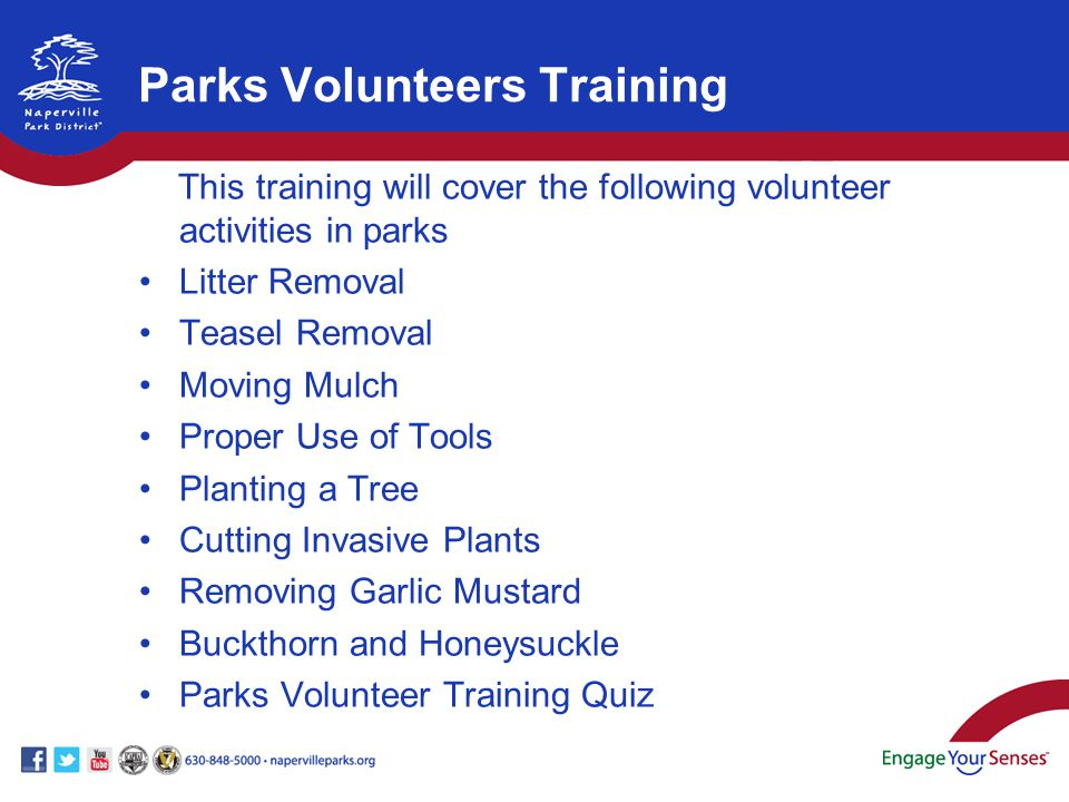 This training will cover the following volunteer activities in parks Litter Removal Teasel Removal Moving Mulch Proper Use of Tools Planting a Tree Cu